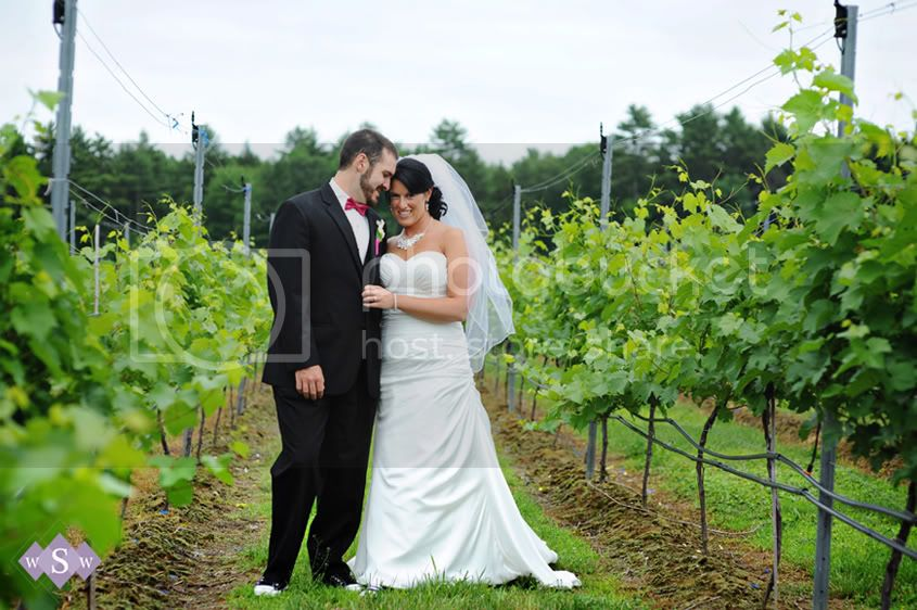 Flag Hill Winnery Wedding- Samantha Warren Weddings
